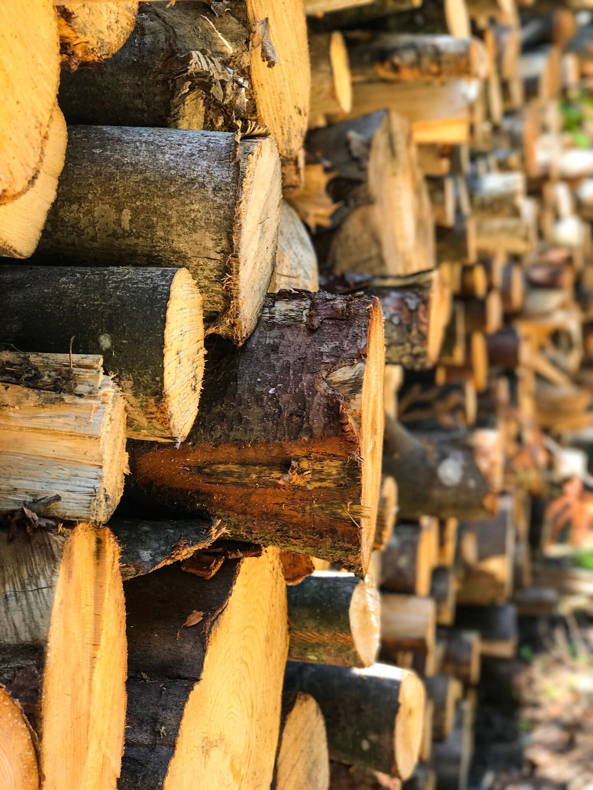 stack, lumber industry, timber, wood - material, log, deforestation, fuel and power generation, woodpile, pile, heap, forestry industry, textured, day, large group of objects, industry, outdoors, close-up, axe, no people