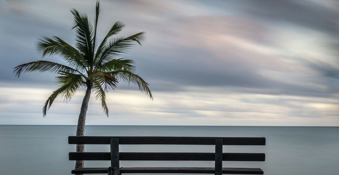 Beach Beauty In Nature Bench Day Horizon Over Water Idyllic Landscape Landscape_Collection Landscape_photography Landscapes Nature Ocean Outdoors Palm Tree Palm Tree Relaxation Scenics Sea Sky Relaxing The Great Outdoors - 2017 EyeEm Awards Tranquil Scene Tranquility View Tourism