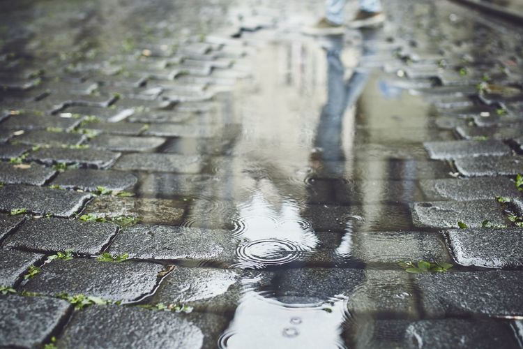 Close-up of wet footpath
