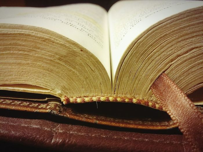 Open THE Book Bible Proverbs Chapter Book