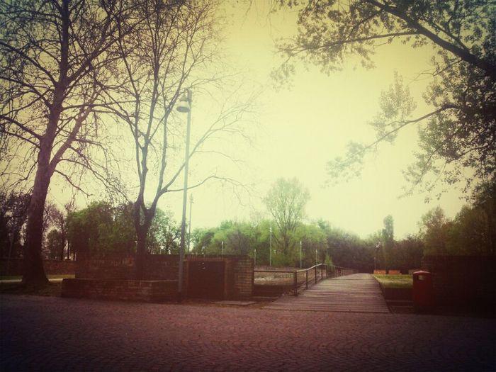 Good Morning Beforschool Green Relaxing