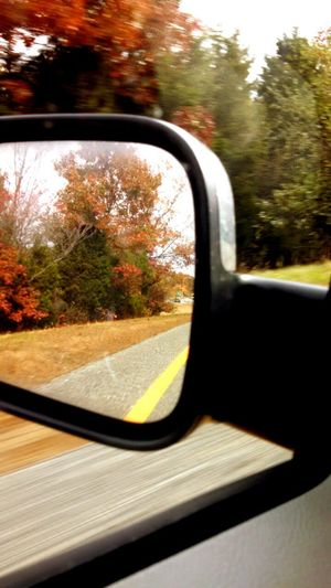In The Rear View Fall2014 Driving To Work Through The Window