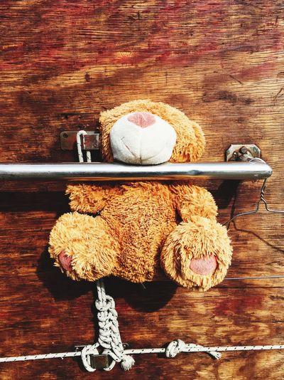 Teddy bear stuck in railing against wooden wall