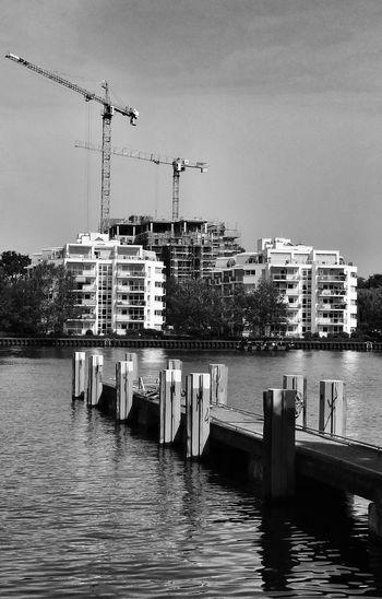 Blackandwhite Monochrome Berlin Craneaddicted