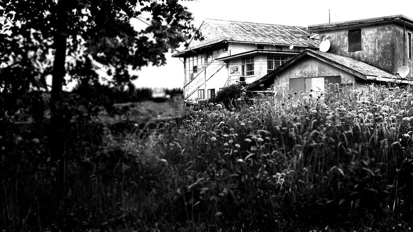 Old grand stand Hello World Taking Photos Sceary Cottage Life Walking Dead Moment Popular Photos OpenEdit Old Things Detail Popular Walking Dead TIme Spooky House Spooky Atmosphere Walking Dead EyeEm Best Edits Check This Out