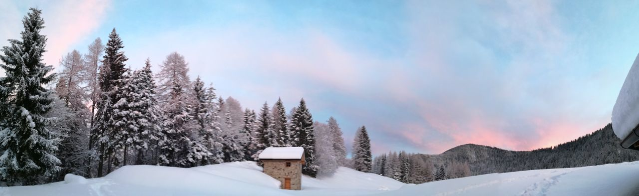 snow makes everything better😍 Colour Your Horizn Susnet Amazing View Sky Cold Sungoesdown Colors Colorful View Wintersky Beaytifulview Nature Photography Beauty In Nature Happynewyear Peace And Quiet 2018 EyeEm Selects Snow Cold Temperature Winter Tree Pine Tree Nature Frozen