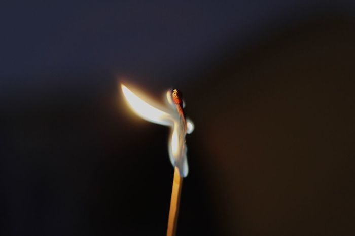Burn Close-up Dark Detail Ember Fire Flame Glow Glowing Illuminated Match Selective Focus Simplicity