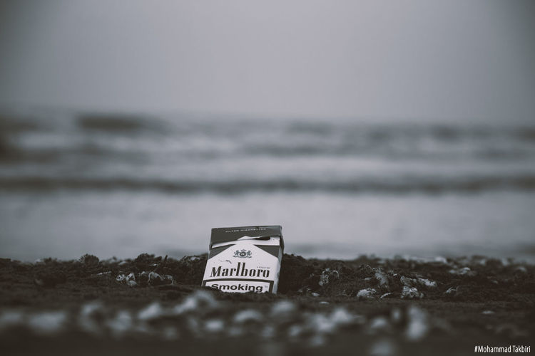Photoshoot Effect Landscape Photography Black & White Nature Cigarette  Marlboro Canon60d Feeling Blackandwhite Remember Cold Day