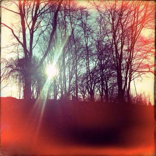 EyeEm Nature Light And Shadow