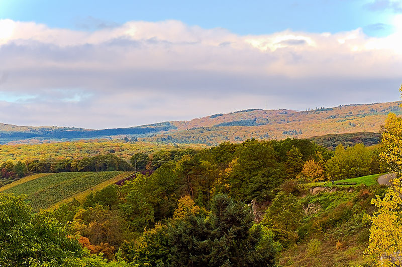 Landschaft um Rüdesheim Autumn🍁🍁🍁 Herbst🍁 Autumn Colors Autumn Landscape Nature Sky Landscape Tree Day Outdoors Tranquility Mountain Herbststimmung Growth Scenics Beauty In Nature No People Tranquil Scene Cloud - Sky Herbstblick In Den Hunsrück