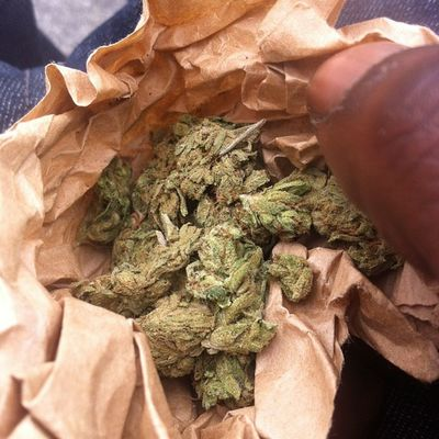 My weed is always free Nofilter Gethigher Dank Weed Calisfinest