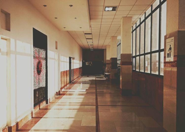 Salon Corridor Hall Hallway University Windows Shadow