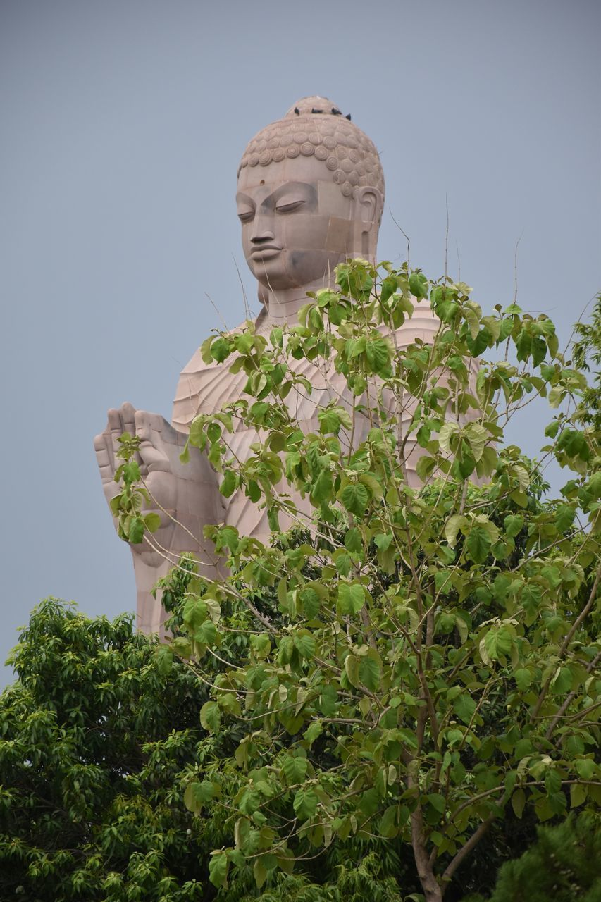plant, human representation, male likeness, sculpture, statue, representation, growth, sky, art and craft, nature, clear sky, religion, no people, day, low angle view, belief, spirituality, creativity, idol