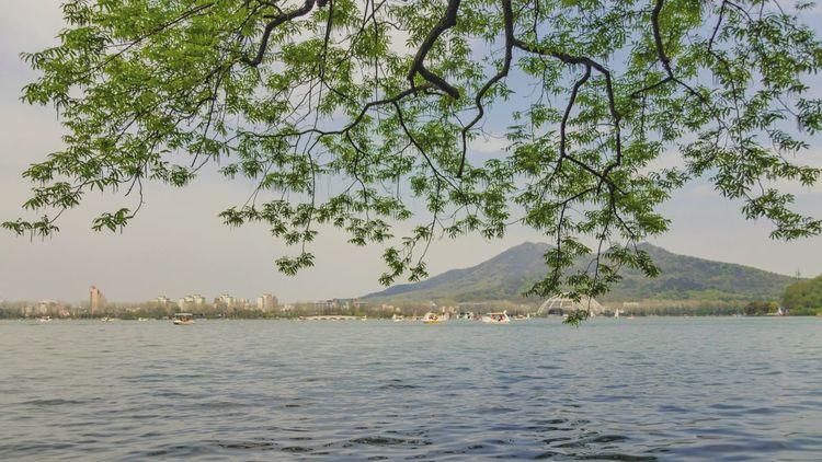 南京玄武湖公园,背景是钟山 Nature Water Tree Beauty In Nature Tourism Mountain City