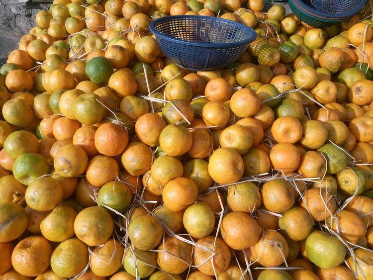 Citrus Fruit Day Food Food And Drink For Sale Freshness Fruit Healthy Eating Market Market Stall No People Orange Fruit Outdoors