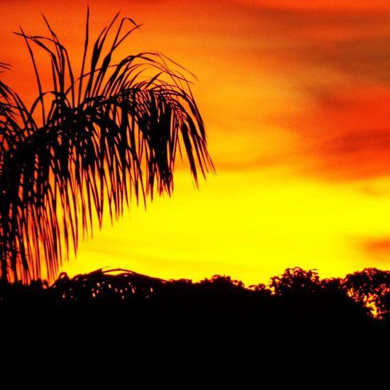 Y.... Aún con toda su violencia éste sigue siendo un lugar simplemente perfecto. Myplace Colombia Leticia Amazonas
