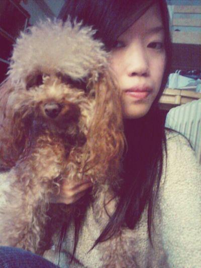 Choco Dog HongKong Girl Cute Pretty Chok Lovely