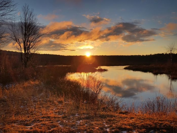 Colorful Sunrise by the River Sunset Sky Water Reflection Beauty In Nature Tranquility Scenics - Nature Cloud - Sky Tranquil Scene Tree Orange Color Sun No People Outdoors Sunlight Nature Non-urban Scene