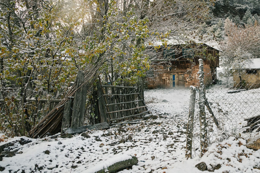 Winter Village Beauty In Nature Bolu..TURKEY Cold Temperature Fencing Fencing Post Landscape Nature Outdoors Pine Tree Rotted Wood Snowy Landscape Snowy Trees Sünnetköy Tree Trees And Sky Turkey Village Village Life Winter Wonderland Wintertime Wooden House Wooden Texture