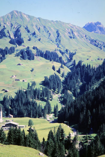 Schröcken 1970 1970s The Sound Of Music🎶 Beauty In Nature Day Environment Idyllic Land Landscape Mountain Nature No People Non-urban Scene Outdoors Scenics - Nature Sky The Hills Are Alive  Tranquil Scene Tranquility