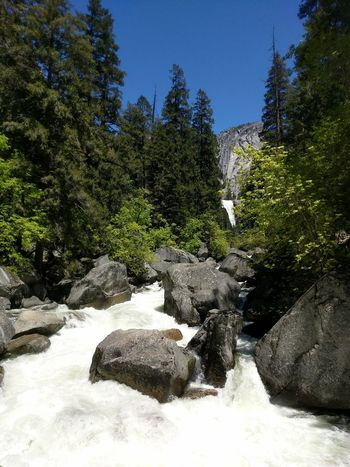 Outdoors Nature Water Spring Landscape Yosemite National Park Freshness Beauty In Nature White Water Scenics Motion Waterfall Power In Nature