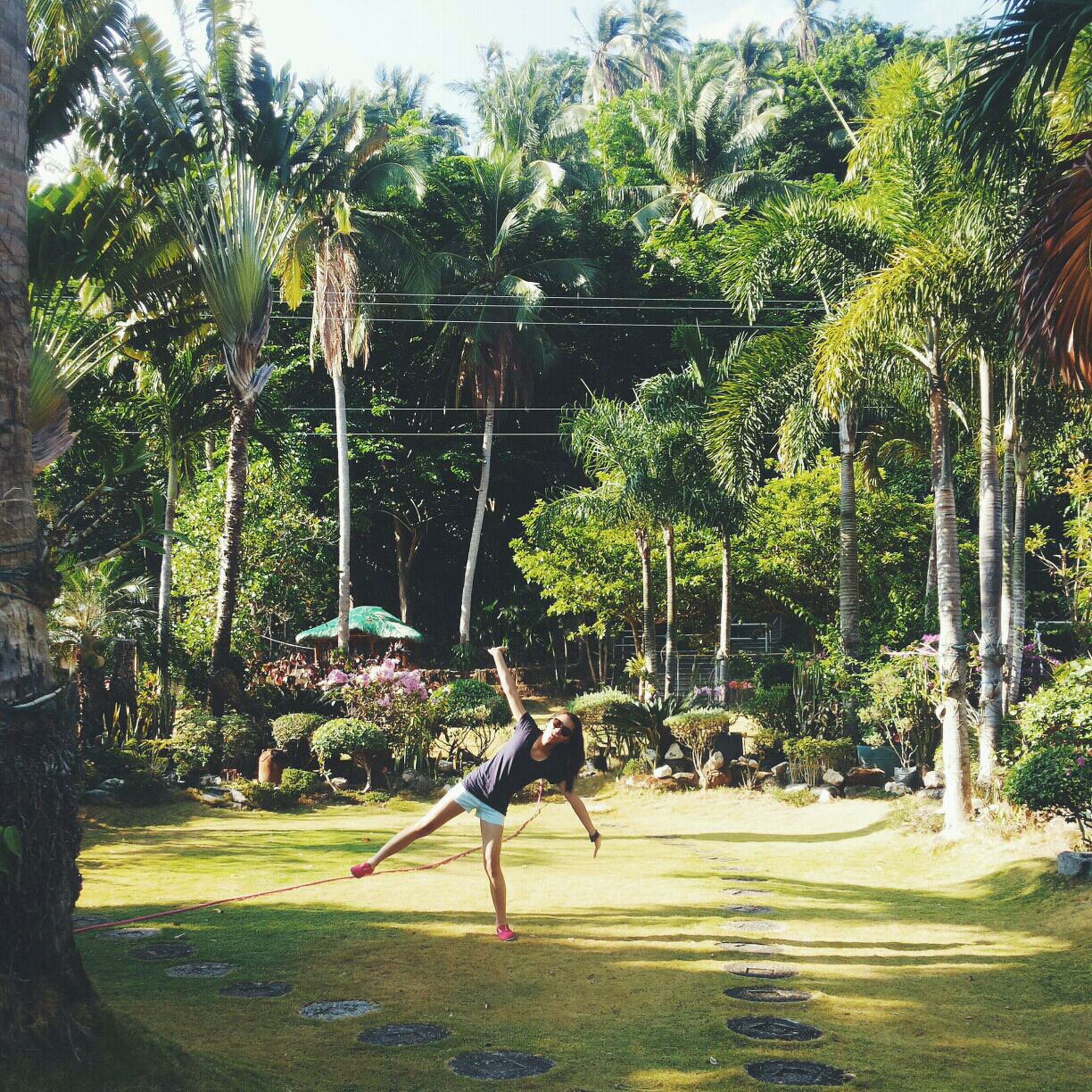 tree, growth, full length, palm tree, park - man made space, green color, sunlight, shadow, nature, plant, day, grass, leisure activity, outdoors, lifestyles, tree trunk, men, animal representation