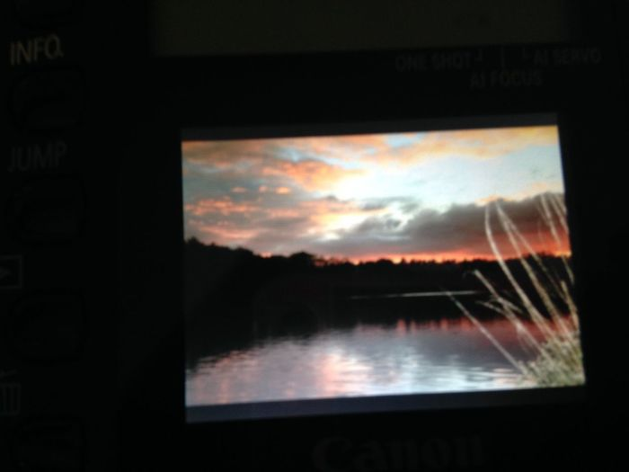 Sky Sunset Leaf Water Off My Canera Best Photo Yet My Best Photo Not Great Quality Taking Photos