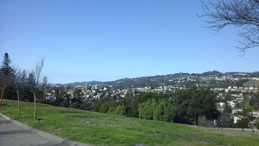 Unfiltered Oakland/Berkeley Hills Enjoying The View Not A Cloud Around Nature_collection From My Point Of View EyeEm Best Shots Freelance Life Awesome_shots Daily_captures Appreciating This Moment Happy2016!;) Unfiltered SFBAYSHOT Nature Luver Every Picture Tells A Story