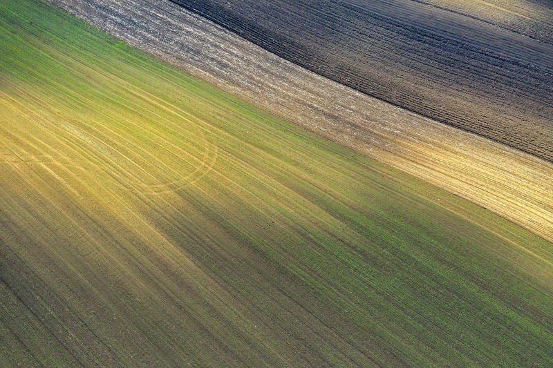 Aerial view of bio based industry and agriculture, plowed terrain in the spring from drone No People Nature Landscape Environment Land Field Scenics - Nature Day Agriculture Agricultural Field Plowed Field Plowed Land Spring Meadow Farmland Spring Is In The Air Drone  Dronephotography Drone Photography Droneshot Aerial View Aerial Aerial Photography Aerial Shot Aerial Landscape