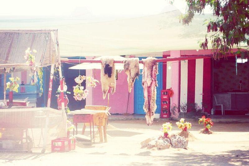 Tunesië Travelling Eye Em Around The World