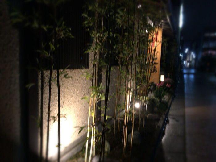 Kyoto,japan Kyoto Night Kyoto Street Kyoto Tradisional House Kyoto Matiya Kyoto Night Street Kyoto Rain Night Night Light Street Kyoto NIght Lights Kyoto Night