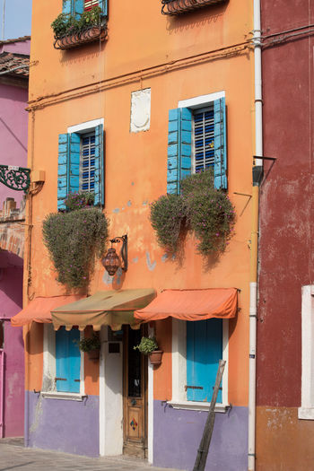 Bright Colours, Building Exterior Hanging Plants Orange And Blue Tranquillity Travel Destinations Travel Photography Window Window Boxes