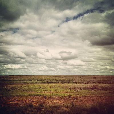 Flat. #roadtrip Roadtrip Lachlanpayneawesomeamazingphotosbestinstagramereverfollowmenow Payneroadtrip