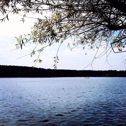 Lake Landscape 长春净月潭