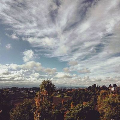 ☁ . . Sky SkyClouds Skylovers Clouds Cloudscape Cloudslovers Fall Fallcolors Autumn Trees Leaf Leaves Leavesfalling RedLeaves Yellowleaves Bluesky Naturelovers Instanature Natura Nature IGDaily Marche Italy Italia Liveloveitaly landscape landscapelovers naturebeauty just_best_photo
