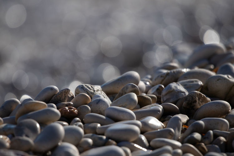 Large Group Of Objects Selective Focus Abundance No People Stone Pebble Day Still Life Close-up Nature Rock Stone - Object Solid Sunlight Outdoors Land Focus On Foreground Food And Drink Beach Wellbeing Surface Level Pier Galets Galette Plage
