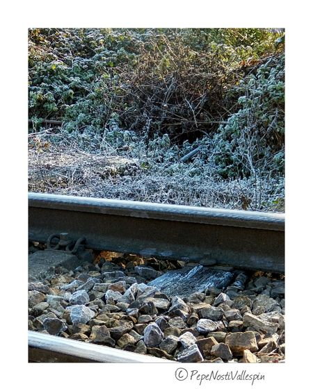 Ice No People Nature Outdoors Nature Is Art Beauty In Nature Naturephotography Poladesiero Outdoor Photography Icefrost Pola De Siero Nature Photography Rails Winterscapes