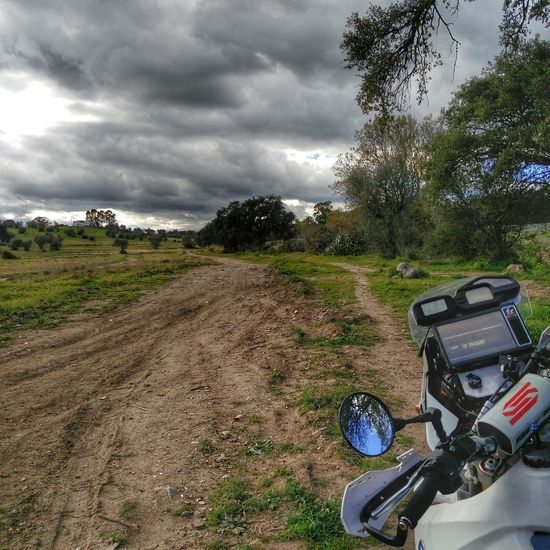 Enduro day! BMW Motorrad Bmw Motorcycle Bmw G 650x Challenge Enduro Lovin' Alentejo-Portugal Green Actionphotography