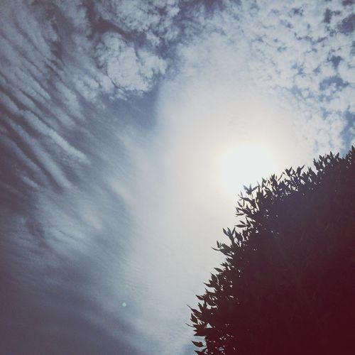 اشعة الشمس.. سارقه كل شبر من السماء ? حررر ?