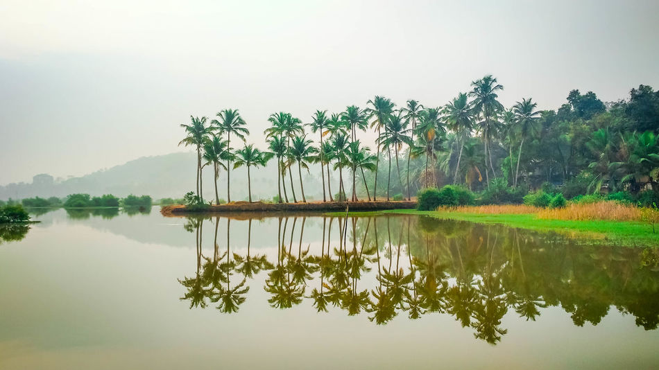 Reflection Beauty In Nature Day Lake Nature No People Outdoors Reflection Scenics Sky Standing Water Tranquil Scene Tranquility Tree Water Waterfront