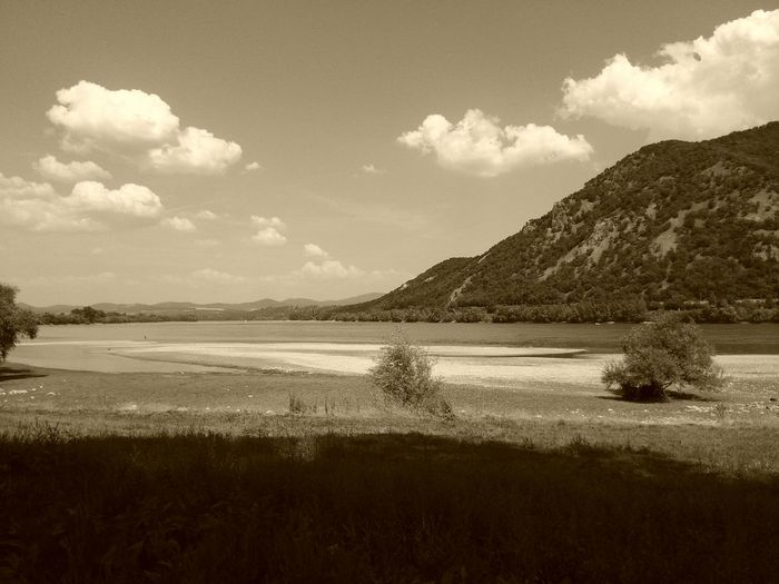 Danube First