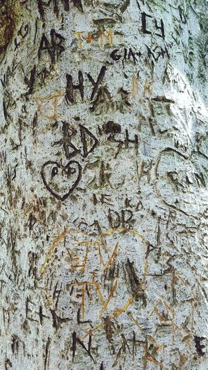 engraved love Permanent Scribe School Kids  Puppy Love Love Engrave Carved Wood Tree Urban Graffiti Crowded Love Initials Heart Embedded Backgrounds Full Frame Textured  Paper Ink Pattern Close-up Written Surface Scribble Capital Letter Rough Board Handwriting