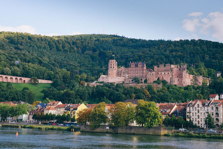 Castle in Old city, Germany Tree Architecture Water Building Exterior Built Structure Plant Building Nature River Waterfront Day Sky Travel Destinations No People The Past Castle History City Outdoors Castle Germany Old Buildings Old Town