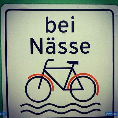 Mudgardweather Mudguard Bicycle Cycling Rain Vienna