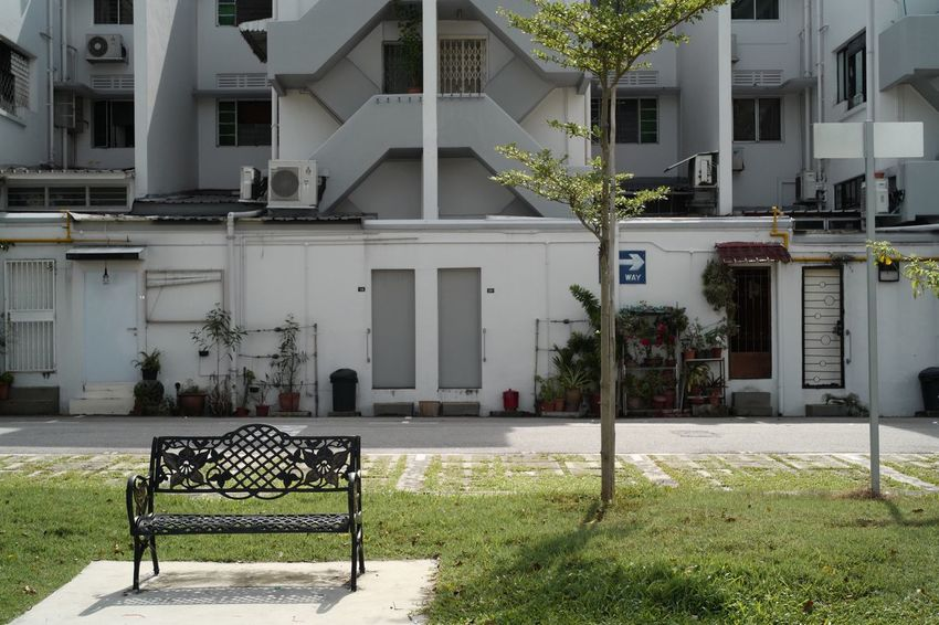 """Building Exterior Architecture Built Structure House Outdoors Residential Building Day No People Tree LeicaSL Sober Insanity Right Way Singaporestreetphotography Tiong Bahru Visual Stories StillLifePhotography Light And Shadow Colours Hidden Within Jalanjalan """" Finding the right way """""""