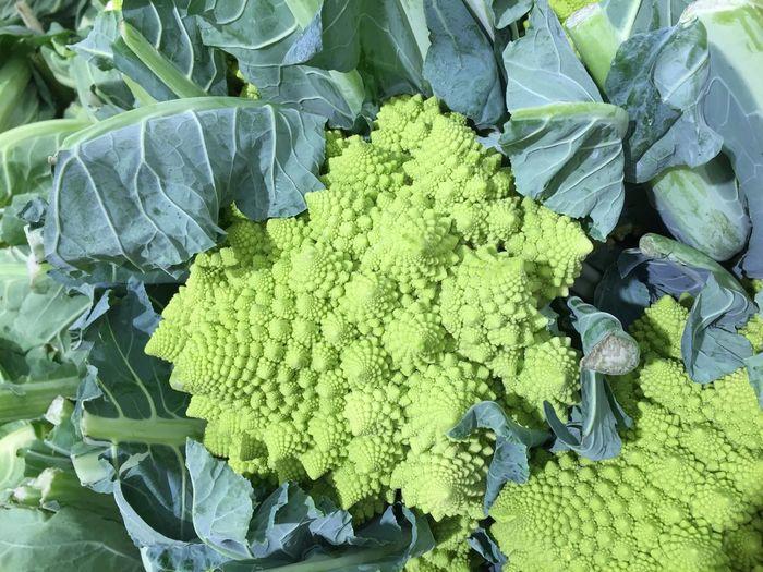 Chouxromanesco Green Légumes