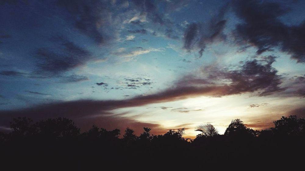 Bangkok Thailand. Tree Sunset Storm Cloud Silhouette Dramatic Sky Sky Cloud - Sky