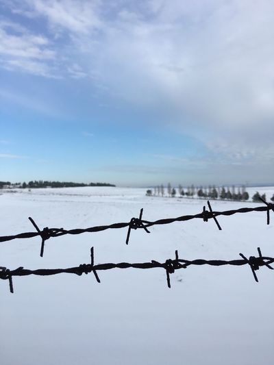 Sky Beauty In Nature Nature Snowy Days... Snowcapped Mountain Razorwire Barbed Wire Barbed Winter Freedom