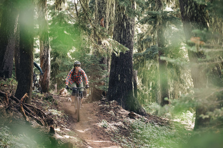 Rear view of man standing amidst trees in forest
