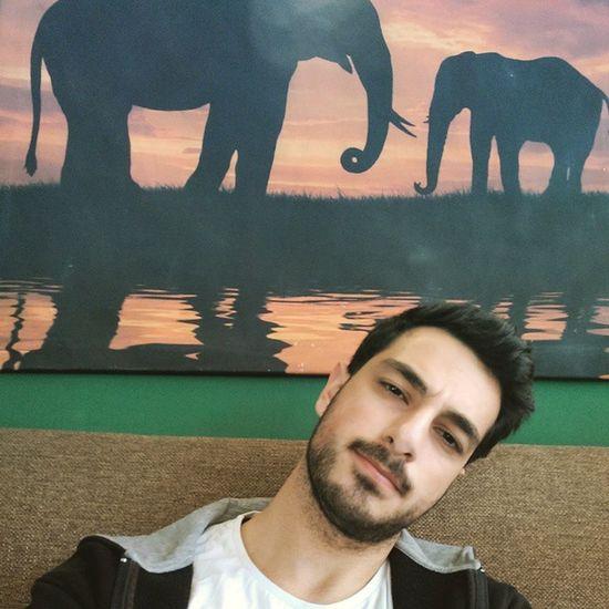 Otobus saatini kaciran Celal'in aklindaki tek soru bu arkadaki filler ne halt ediyor :)))) Vscocamturkey Otobus Bekle Tagsforlikes fil